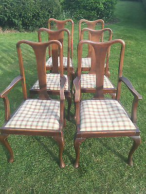 6 Queen Anne Style Edwardian Dining Chairs - 2 Carvers