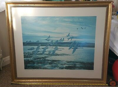 Sir Peter Scott. A Signed Limited Edition Print swans / wildlife /birds - framed