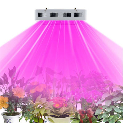 LED Grow Light Full Specturm,Greenhouse and Indoor Plant Flowering Growing-1000W