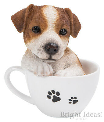 Vivid Arts - PET PALS PUPPY DOG IN TEACUP & JRT BOX - Jack Russell Terrier