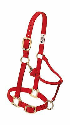 Weaver Leather Original Adjustable Chin and Throat Snap Halter Red Large ... New