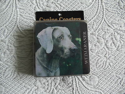 New Weimaraner Rubber Backed Coasters   4