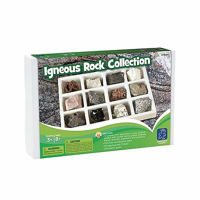 Educational Insights Igneous Rock Collection New