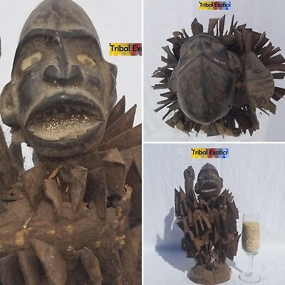 PREMIUM Tribal African Art - Bakongo Nkisi Power Figure Sculpture Statue Mask