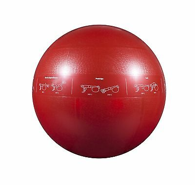 GoFit Red 65cm ProBall Stability Ball for Yoga Fitness Balance Exercise B... New