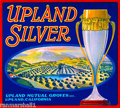 Upland San Bernardino California Silver Orange Citrus Fruit Crate Label Print