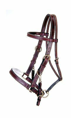 Tough 1 Australian Outrider Collection Leather Bridle/Halter Brown Horse New