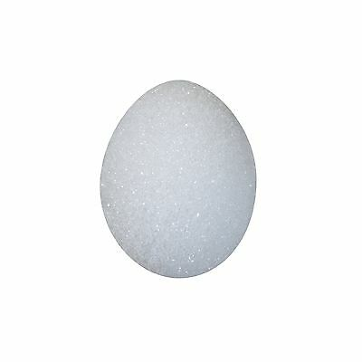 FloraCraft EG25S/36 Styrofoam Eggs 2 1//2-Inch-by-1 7/8-Inch Egg Hen 6 Pe... New