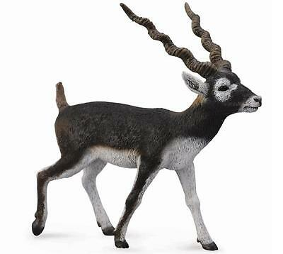 Collecta Animali Selvaggi Wild Life Blackbuck Cervo Corna Ondulate 88638