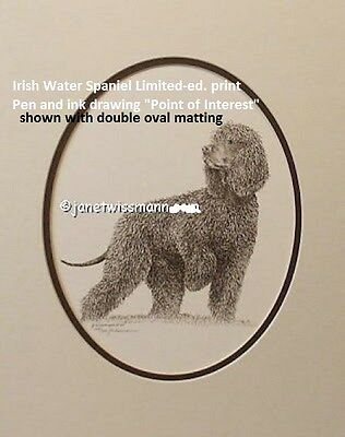 FINE ART PRINT IRISH WATER SPANIEL Janet L. Wissmann 11x14 Pen Ink Drawing LtdEd