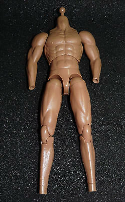 1/6 scale dam toys muscular body - 2 extra arms