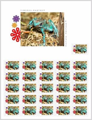 GREEN & BLACK Poison FROG [2] _PRE-ORDER_PicPostage Stamp SHEET Canada 2017 po54
