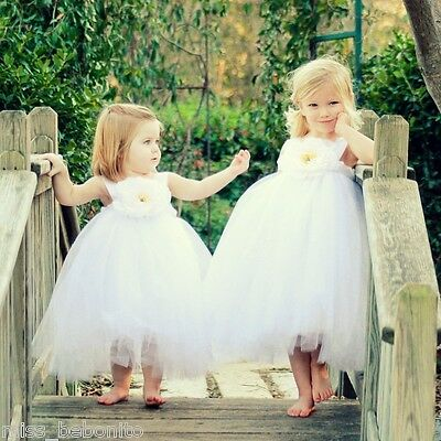 Amelia Baby Flower Girl Formal Tutu Dress Christening Party Bridesmaid Gown New