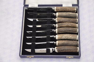 Eight Cased Chatsworth Stag/Antler Handle Steak Knives Made Sheffield England
