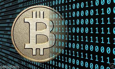 0.005 Bitcoin (0,005 BTC ) Direct Transfer to your wallet