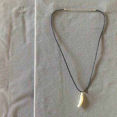 Coyote Tooth Leather Necklace!