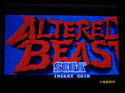 Altered Beast -- Sega / Boot-Leg / Working & Clean / Arcade Jamma Pcb  **  611