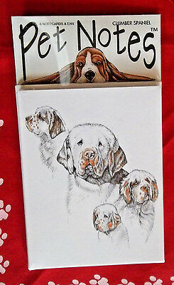 Clumber Spaniel Note Cards