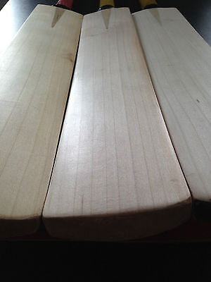Grade 1 English Willow Cricket Bats Knocked In Discounts On Bulk Orders