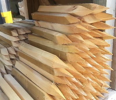 Wooden Fencing Pegs | Stakes 18'' Long 1.5'' x 1.5'' approx.