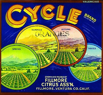 Fillmore Cycle Orange Citrus Fruit Crate Label Art Print