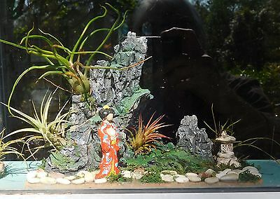 MINIATURE  JAPANESE GARDEN for TABLE or WINDOWSILL with 4 TILLANDSIA