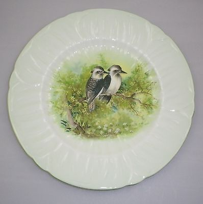 Rare Shelley Plate Decorated With A Pair Of Kookaburras