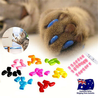 20pcs Soft Pet Cat Nail Caps Claws Cover Control Paw Adhesive Glue Protective