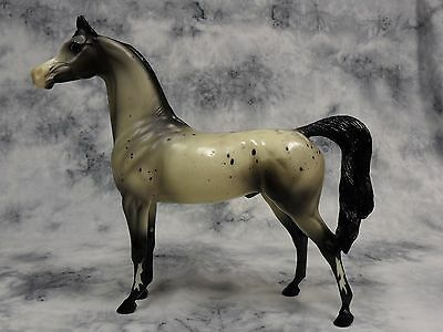 Peter Stone * Picasso * Glossy Appaloosa Arabian Arab Traditional Model Horse