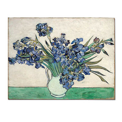 Framed Vase Irises by Van Gogh Artwork Reproduction Canvas Print Home Art Decor