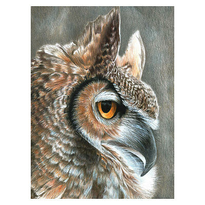 Sepia Owl - CPN19 Royal & Langnickel Pencil By Numbers