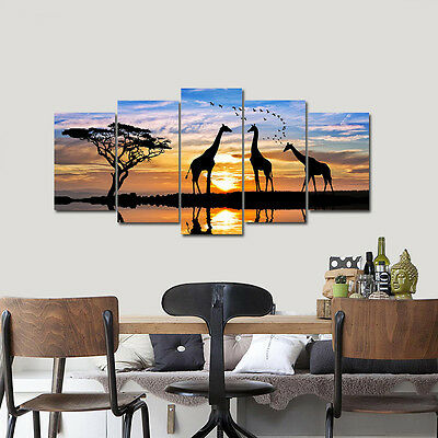 Framed Canvas Print Photo Wall Art Home Decor Poster Landscape Sunset Animals