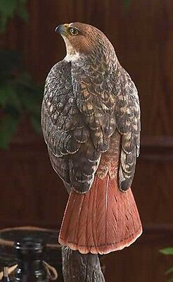 Red Tailed Hawk Sculpture / Figurine