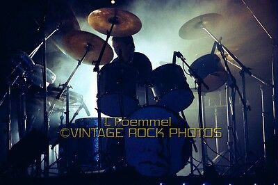 Roger Taylor, Queen Photo 8x12 or 8x10 inch Live 70s Concert Pro Print  L45
