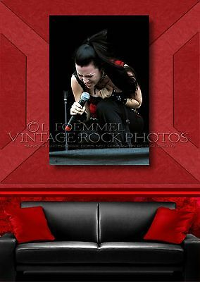 Amy Lee, Evanescence 24x36 inch Poster Size Photo Exclusive Pro Studio Print L19