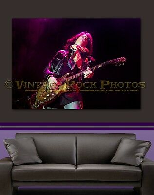 Joe Perry Project 24x36 in Canvas Print Fine Art Gallery Framed Gilcee Photo s05