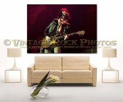 Joe Perry Project 24x36 in Canvas Print Fine Art Gallery Framed Gilcee Photo s33