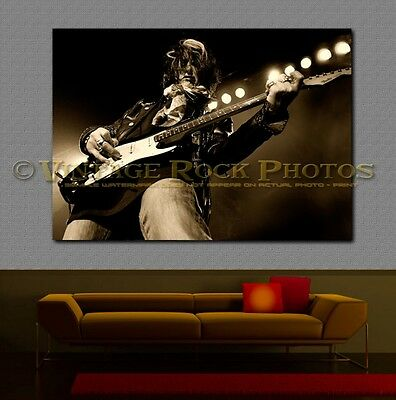Joe Perry Project 24x36 in Canvas Print Fine Art Gallery Framed Gilcee Photo s45