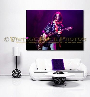 Joe Perry Project 24x36 in Canvas Print Fine Art Gallery Framed Gilcee Photo s24