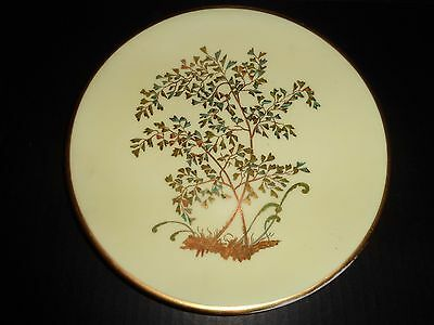 Antique DERBY Unique BOTANICAL PORCELAIN PLATE Hand Painted  England