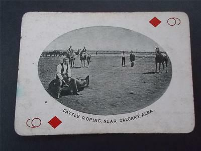 Vtg Antique Photo CATTLE ROPING CALGARY ALBA CANADA CANADIAN Playing Card c1905