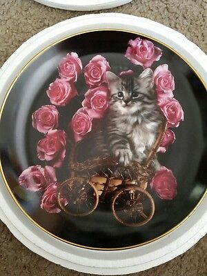 Coming Up Roses ROSY STROLL    Danbury Mint KITTEN KITTY Plate