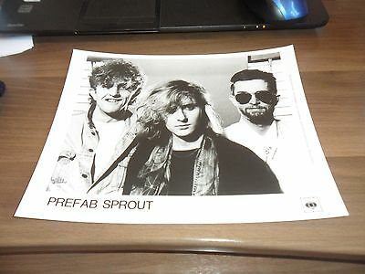 Prefab Sprout  Promo Photo 10'' X 8'' Cbs