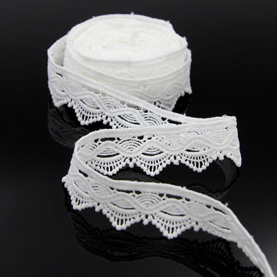 5 Yd Vintage Embroidered Lace Edge Trim Ribbon Wedding Applique DIY Sewing Craft