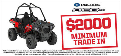 NEW Polaris ACE 500 + free towhitch.  Save $500