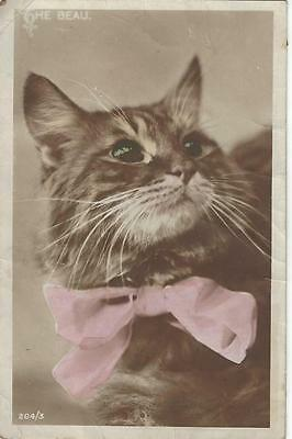 Beautiful Cats Head Wearing A Pink Bow 1916 Postcard