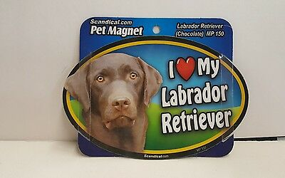 "Scandical I Love My CHOCOLATE LABRADOR Dog Laminated Car Pet Magnet 4""x6"" MP 150"