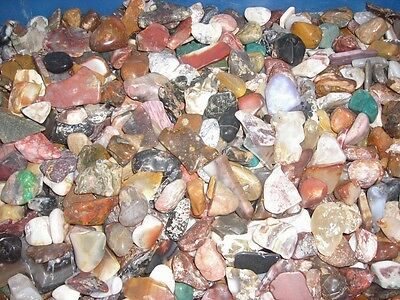 Tumble Polished Agate and Jasper Assortment 1 lb. Mixed Lot of Large Stones