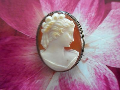 Vintage cameo pin/pendent