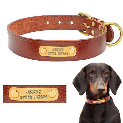 Genuine Leather Custom Dog Collar Pet Cat Personalized Free Engraved Nameplate